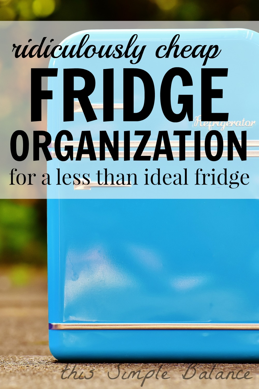 refrigerator organization, fridge organization ideas dollar store