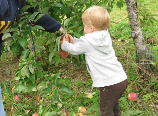 things to do in the fall with kids